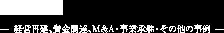 実績紹介 経営再建、資金調達、M&A・事業承継・その他の事例